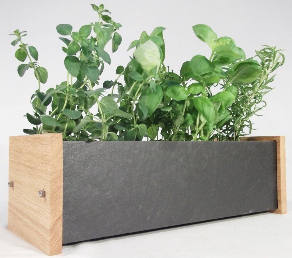 plant base box